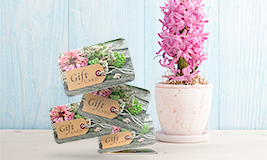 flower gift card gallery size